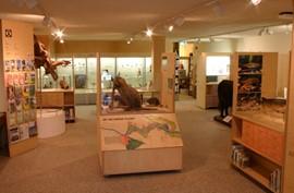 Nijmegen Natuurmuseum informatiecentrum