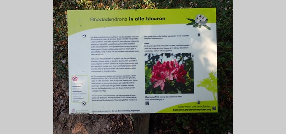 Toelichting grote collectie rododendrons