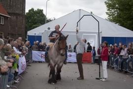 Paardenmarkt 2011 Ringsteken met Belgische trekpaarden